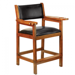 spectator chair, cue and case, billiard chair